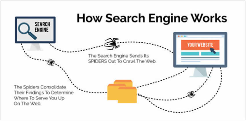 How Search Work